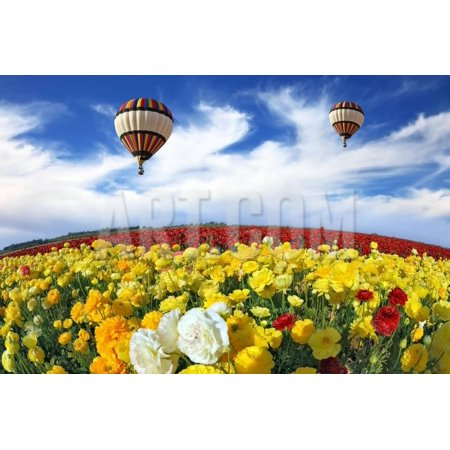 Beautiful Spring Weather Two Beautiful Big Balloons Flying Over The