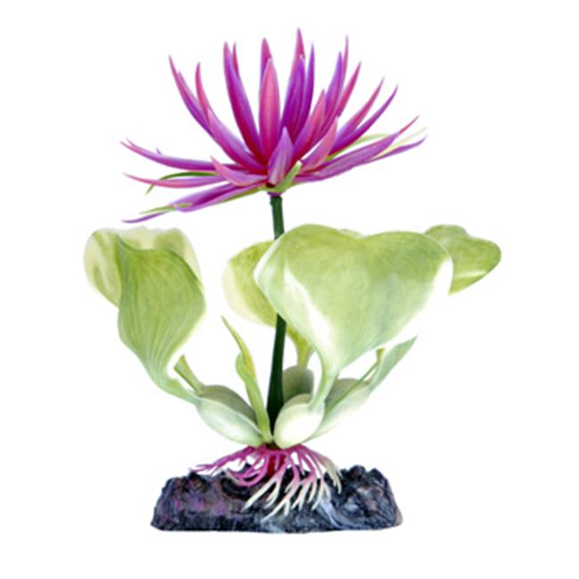 Red Water Hyacinth 3 in. Heavy Weighted Base - image 1 de 1