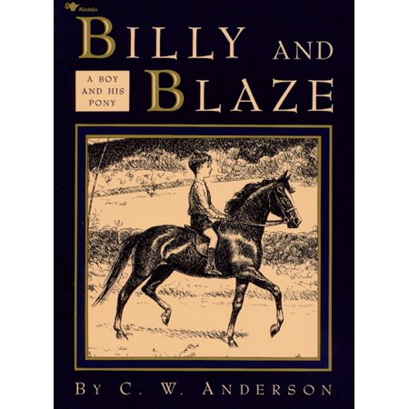 Billy and Blaze : A Boy and His Pony