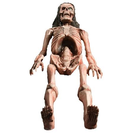 Morris Costumes Bones Animated Halloween Costume - Walmart.com