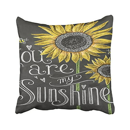 WinHome You Are My Sunshine Sunflowers Chalk Painting Decorative Pillowcases With Hidden Zipper Decor Cushion Covers Two Sides 18x18 - You Are My Sunshine Movie