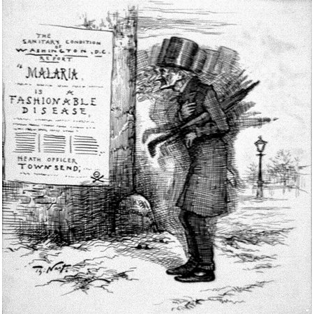 Nast Maleria Victim Nthe Pomps And Vanities Of Our National Capital American Cartoon By Thomas Nast 1881 Showing A Man Suffering From Malaria In Washington Dc Rolled Canvas Art     24 X 36