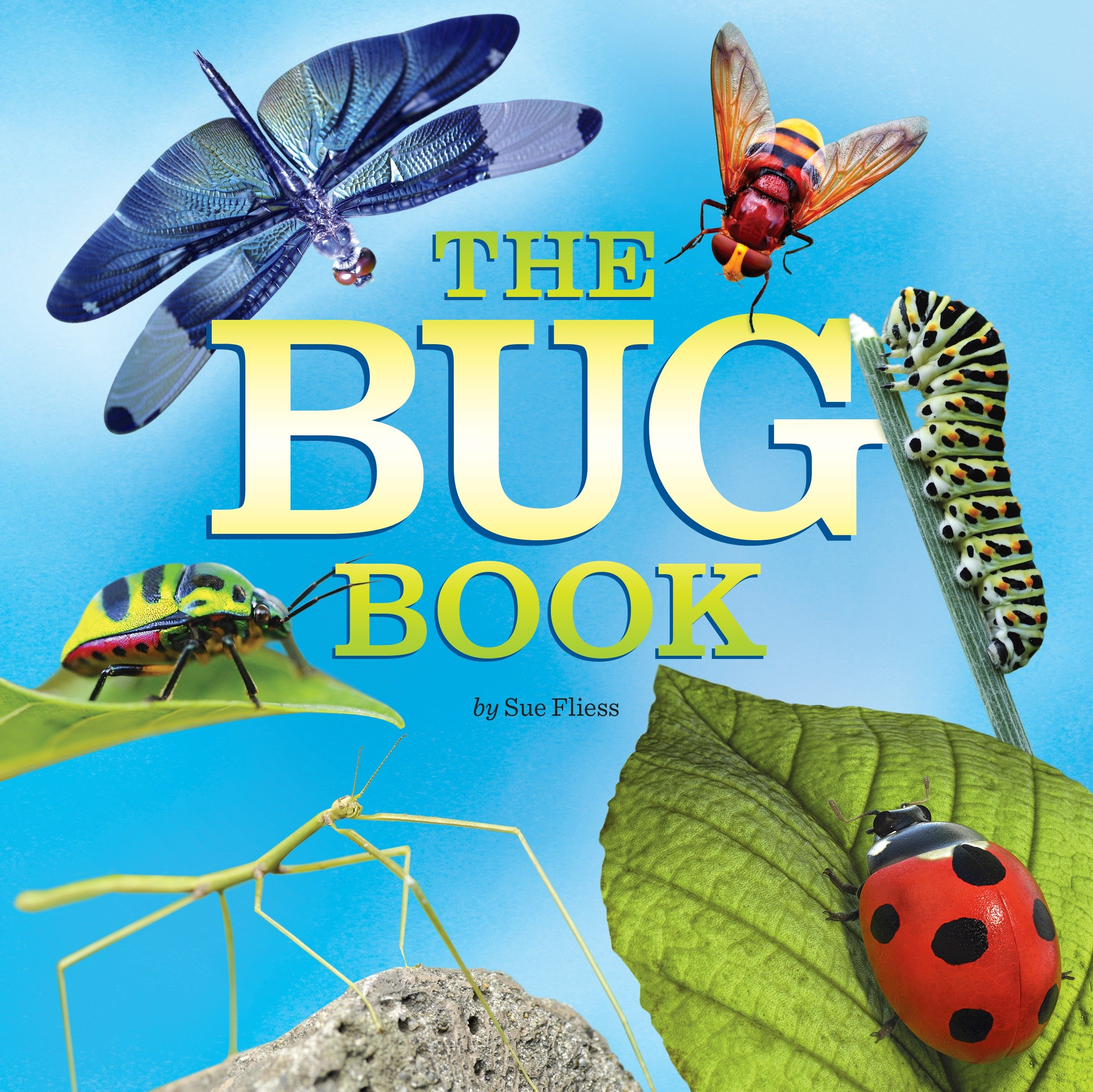 The Bug Book (Paperback)