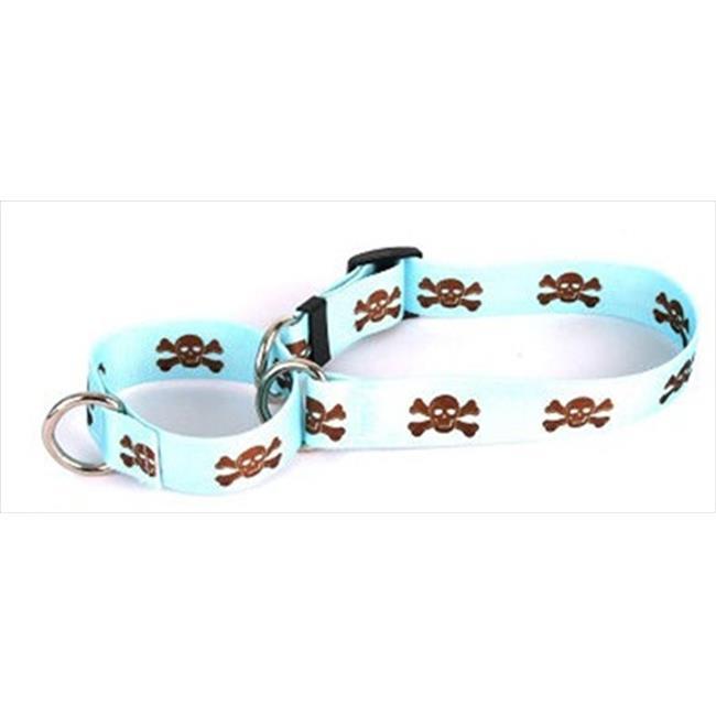 Yellow Dog Design M-BBSK102M Blue and Brown Skulls Martingale Collar - Medium