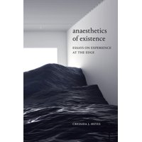 Anaesthetics of Existence : Essays on Experience at the Edge