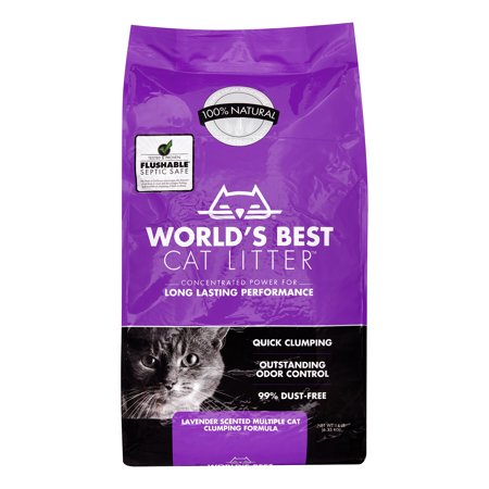 Best Cat Food For Multi Cat Household