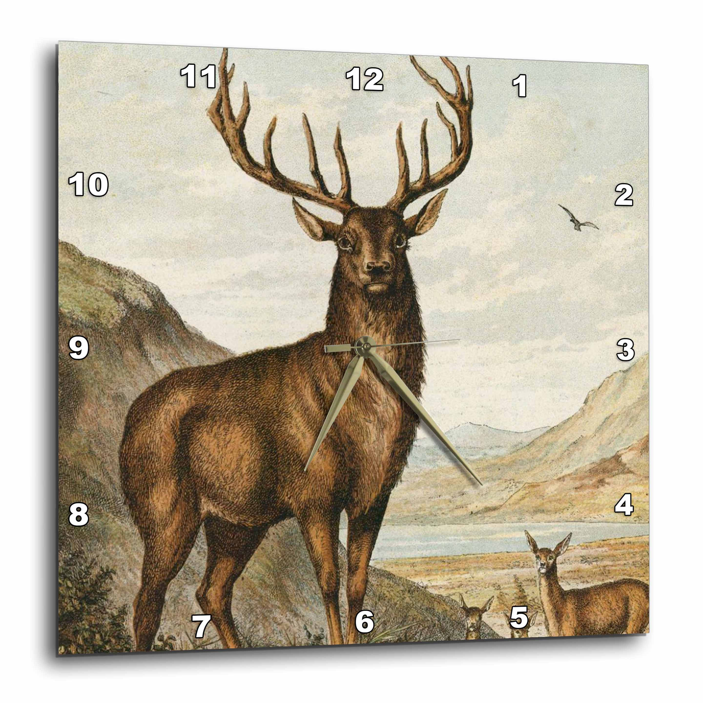 3dRose Deer, Wall Clock, 10 by 10-inch
