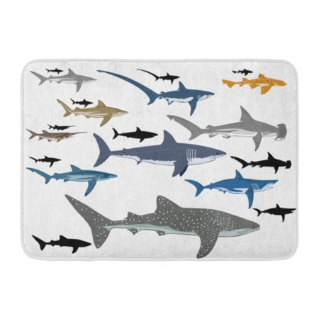 SIDONKU Blue Whale Shark Species Reef Black Tip Life Doormat Floor Rug Bath Mat 23.6x15.7 inch ()
