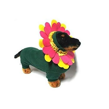 Dog Halloween Costume - Pink Garden Flower Colorful Headpiece & Green Bodysuit