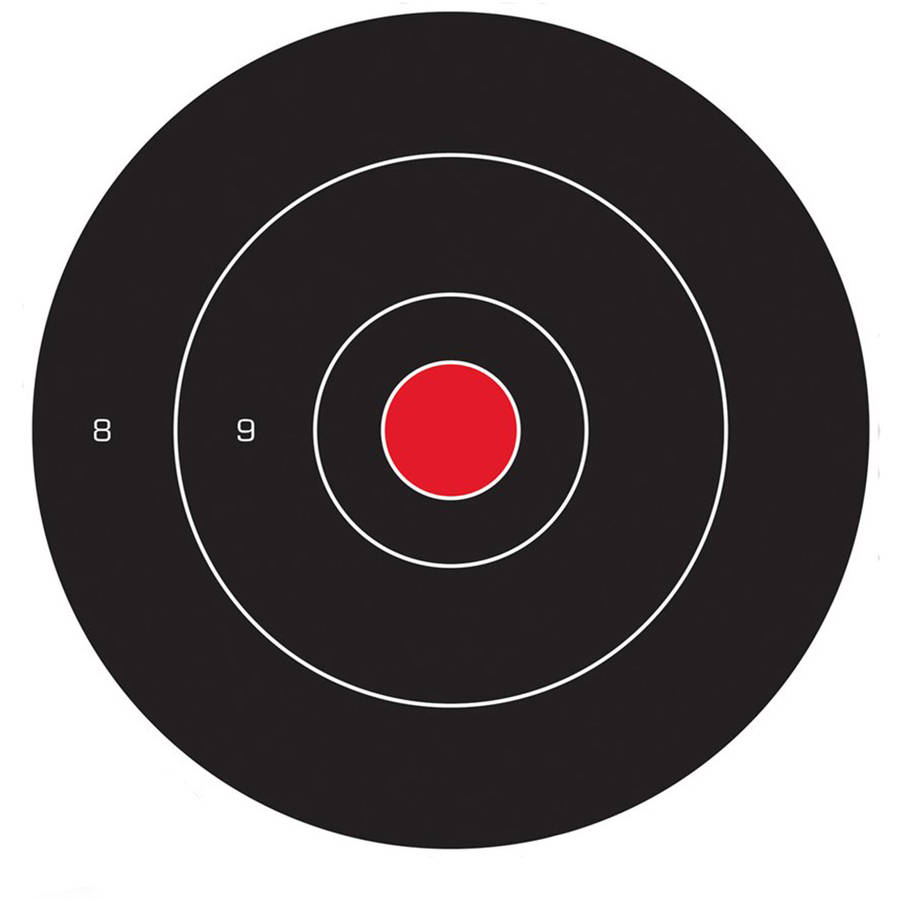 "Birchwood Casey Dirty Bird 12"" Bull's-eye Target by Birchwood Casey"