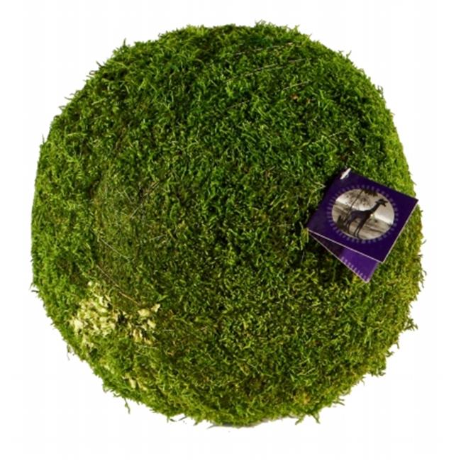 Super Moss 21648 4 in. Sheet Moss Ball Green Pack Of 36