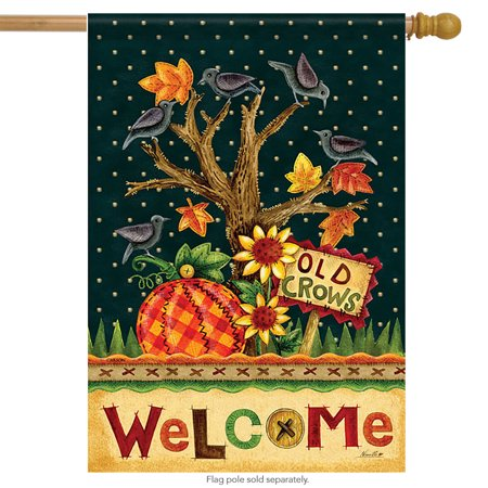 Left Side Banner - Old Crows Welcome House Flag Double Sided Decorative Banner 28