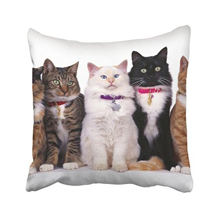 WinHome Five Cute Cats Black And Brown And White With Bells Decorative Pillowcases With Hidden Zipper Decor Cushion Covers Two Sides 18x18 inches](Decorative Bells)