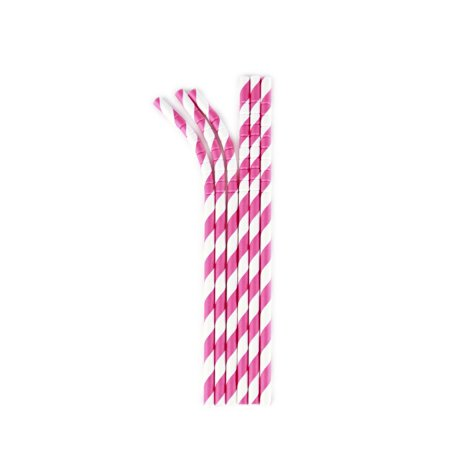 (2 pack) Aardvark Eco-flex Paper Straws, Pink Razzmatazz Stripe, 24 Ct