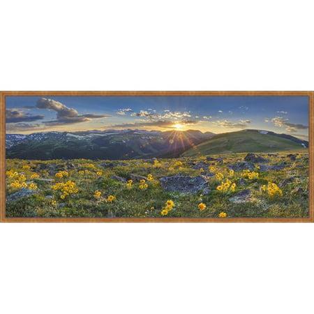Somerset House Publishing 5910 Colorado Sunflower Sunset Panorama 1, Framed Giclee Canvas Art - Bronze, Brushed Effect Metallic