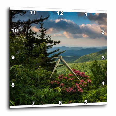 3Drose Mountain Laurel  Beacon Heights  Blue Ridge Parkway  North Carolina  Wall Clock  10 By 10 Inch