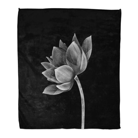 LADDKE Throw Blanket Warm Cozy Print Flannel Pink Beautiful Lotus Flower Beauty Black Bloom Comfortable Soft for Bed Sofa and Couch 50x60 Inches - Lotus Flower Bead