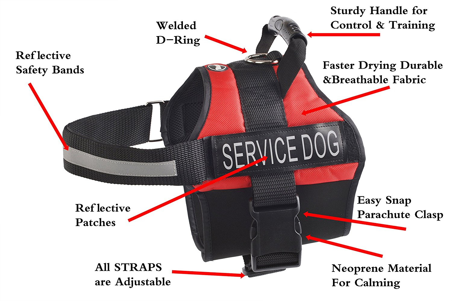 Expawlorer Anti Anxiety Stress Relief Service Dog Harness Training