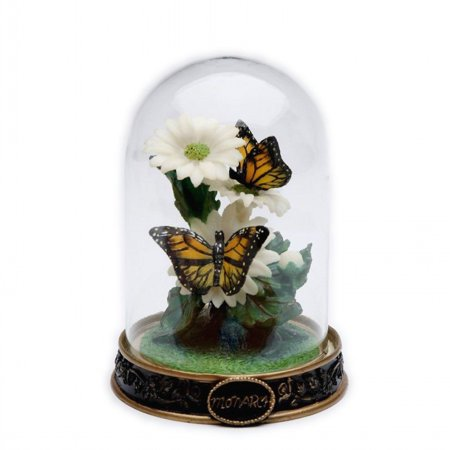Monarch Butterfly In Glass Dome
