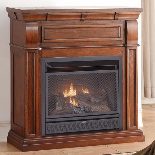 Pro Dual Fuel Vent Free Gas Fireplace 26 000 BTU T