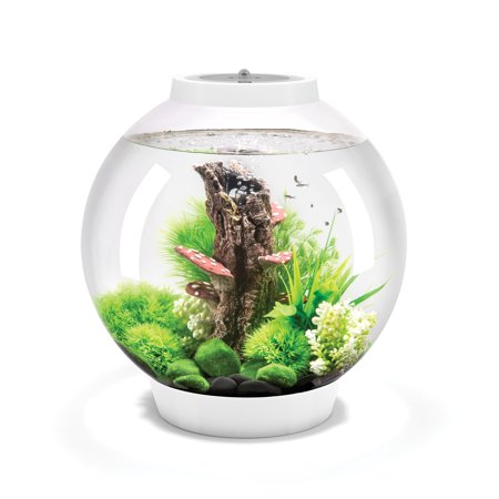 biOrb CLASSIC 30 Aquarium with MCR Light - 8 gallon, white