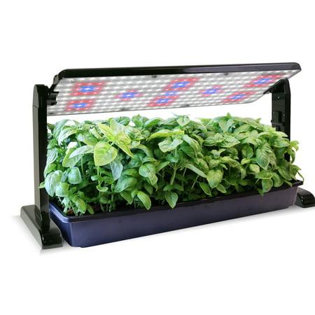 AeroGarden 45 Watt Grow Light Panel (Best Aerogarden For Growing Weed)