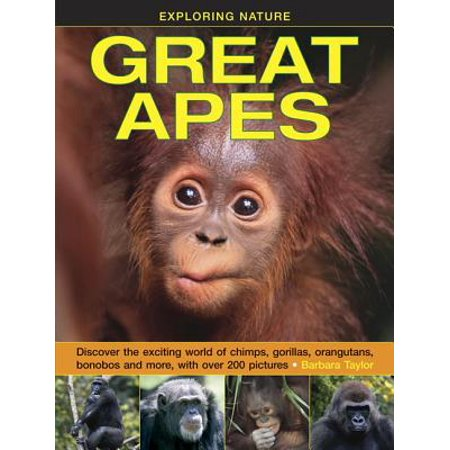 Exploring Nature: Great Apes : Discover the Exciting World of Chimps, Gorillas, Orangutans, Bonobos and More, with Over 200 Pictures