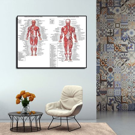 Ustyle Human Anatomy Muscle Structure Print Canvas Living Room Bedroom Wall Decor Home Office Wall Picture Frameless - image 2 de 6