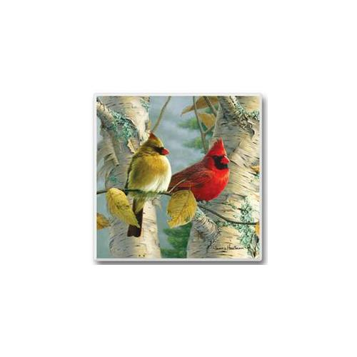 Feathered Friends Coasters Cardinals Set of 6
