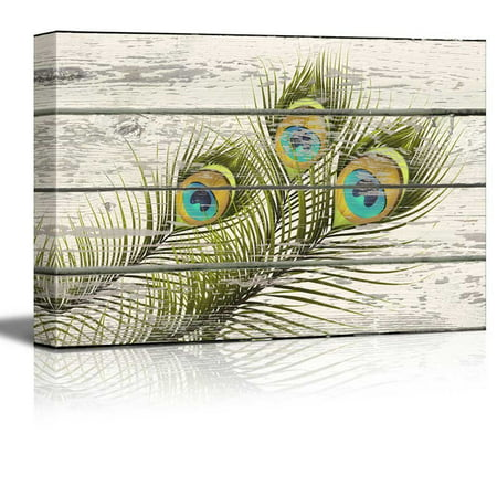 wall26 - Colorful Peacock Feathers Artwork - Rustic Canvas Wall Art Home Decor - 32x48 inches](Feather Wall Art)