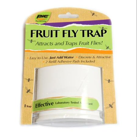 Pic Fft White Fruit Fly Trap - Walmart.com