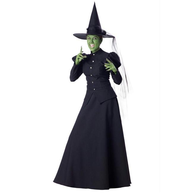 Costumes For All Occasions Ic1022Md Wicked Witch Adult Med