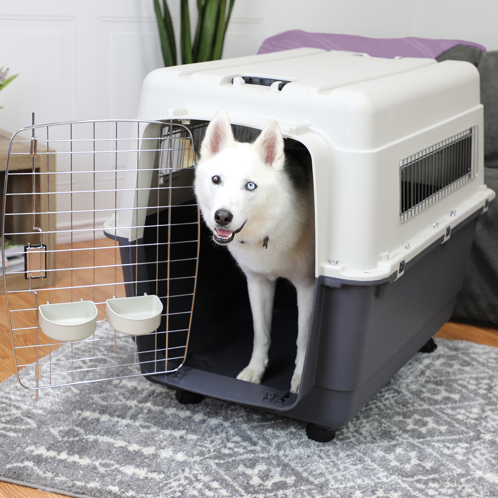 Large Rolling Travel Dog Crate