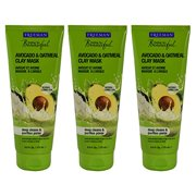 Freeman Facial Avocado & Oat Clay Mask 6 Ounce (177ml) (3 Pack)
