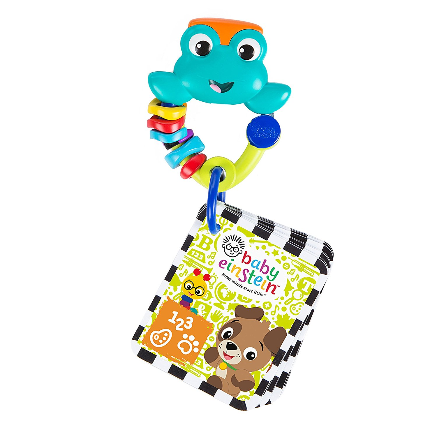 Baby Einstein Take Along Discovery Cards Toy Frog by Baby Einstein
