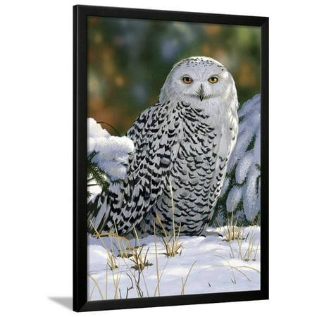 Snowy Owl Framed Print Wall Art By William Vanderdasson](Thirty One Owl Print)