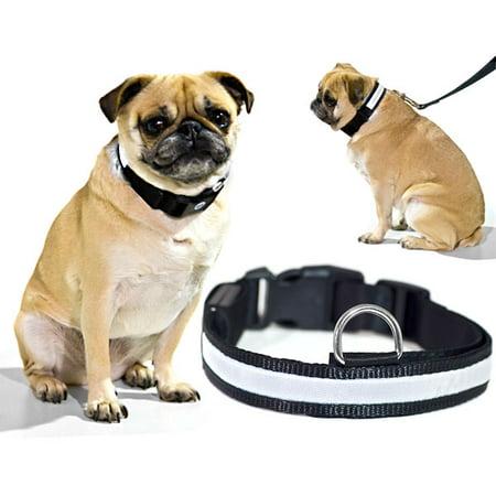 White LED Light Dog Collar - Small - Dog Pet Night Safety Fashionable Flashing Light Up Collar Nylon Large Adjustable - image 6 de 6
