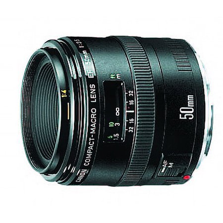 Canon EF 50mm F/2.5 Macro Lens, With Canon 1-Year USA Warranty