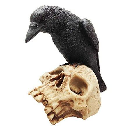 Dark Crow Raven Hovering on Prey Skull Skeleton Resin Figurine Sculpture - Crow Skeleton