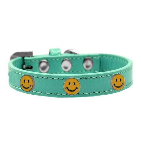 Aqua Show Dog Collar (Happy Face Widget Dog Collar Aqua Size 14)