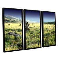 'Fall Creeps' 3 Piece Floater Framed Canvas Art Print Set, 36x54