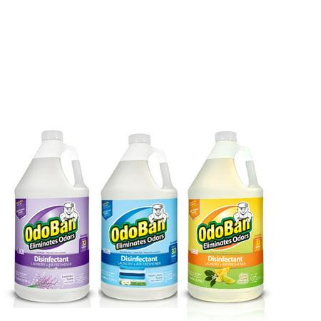 OdoBan Disinfectant Odor Eliminator 3 Gal Concentrate Variety -- Citrus, Lavender, Fresh Linen Scents ()