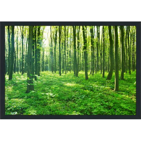 Picture Perfect International Green Forest Framed Photographic Print