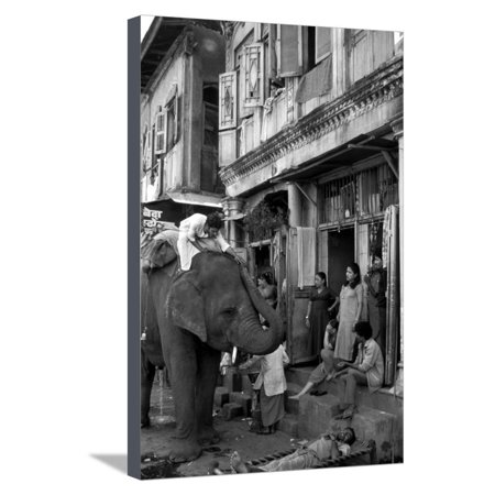 An Elephant Collects Tips from the Prostitutes on Falkland Road for Good Luck, Mumbai, 1980 Stretched Canvas Print Wall (Best Prostitutes In Mumbai)