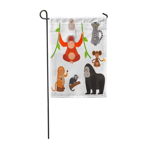 LADDKE Brown Jungle Different Types of Monkeys Rare Primate Garden Flag Decorative Flag House Banner 12x18 inch