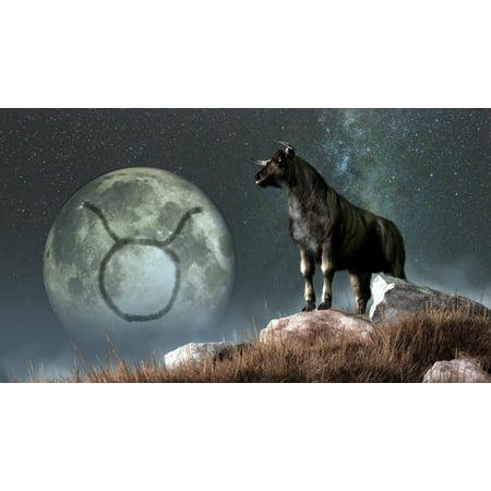 Taurus Is The Second Astrological Sign Of The Zodiac Canvas Art   Daniel Eskridgestocktrek Images  19 X 11