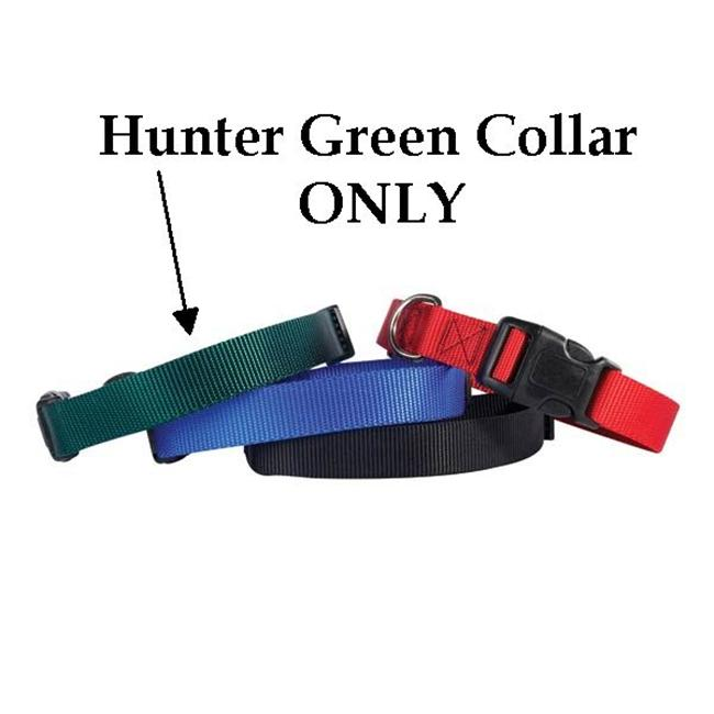 Pet Pals TP811 14 45 Guardian Adj Collar 14-20 x .75 In Hunter Green