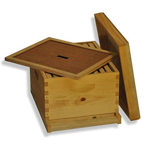 Goodland Bee Supply Single 10 Frame Deep Brood Box Beginners Beehive Kit - GL1STACK ()