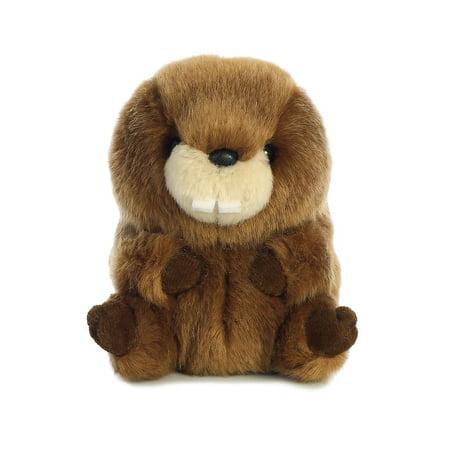 Bucky Beaver Roly Pets 5 inch - Stuffed Animal by Aurora Plush (16819)