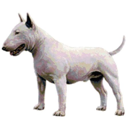 - Bull Terrier Dog Counted Cross Stitch Pattern